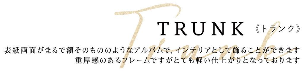 TRUNK《トランク》 表紙両面がまるで額そのもののようなアルバムで、インテリアとして飾ることができます 重厚感のあるフレームですがとても軽い仕上がりとなっております